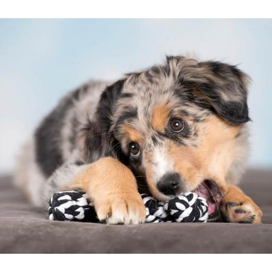 Hundespielzeug LABONI Bonnie Bone schwarz-weiss